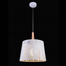 Подвесной светильник Maytoni Lantern F029-01-W